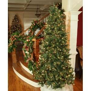Balsam Fir Prelit Tree   6.5 Pre Lit Balsam Fir LED Tree