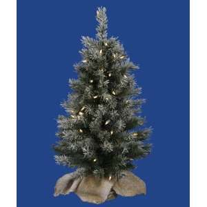 Lit Flocked Jackson Pine Christmas Tree in Burlap Sack   Clear Lights