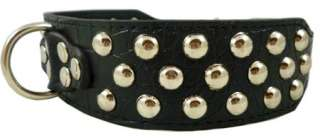 Pitt Bull 2 wide Studs Black Leather Dog Collar Large 17 20 Amstaff