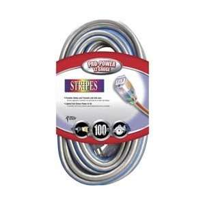 Cable 02549 NV 100 Foot 12/3 Neon Outdoor Extension Cord, Silver/Blue