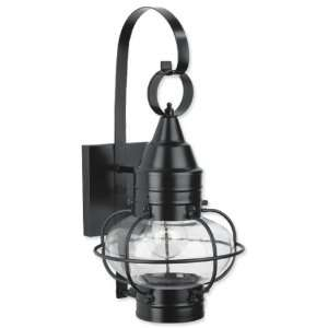 com Norwell Lighting 1513 BL CL Black with Clear Glass Classic Onion